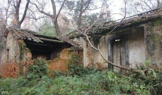 农村空心房处置开始执行:2种拆除,3种补偿